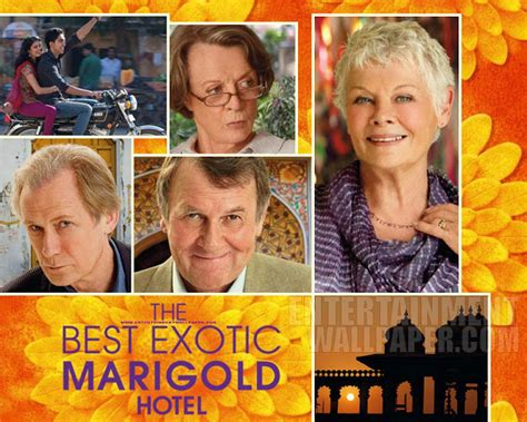 the best marigold hotel 2011 swag the best marigold hotel