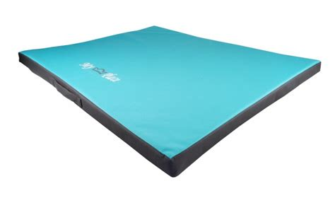 Tapis Pour Chien Grande Taille by Matelas Tapis Pour Grand Chien Lazy Animaloo