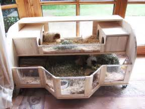 Petco Rabbit Hutches Creative Guinea Pig Cages Cage Inspiration German