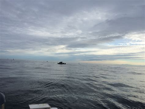 puget sound boat charters marine salmon fishing expands to many areas of puget sound