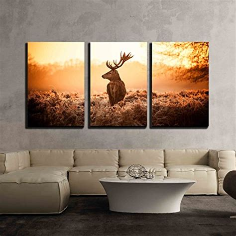 home decor red deer wall26 3 piece canvas wall art red deer in morning sun