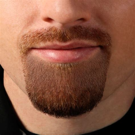 Goatee Trimming Template by Goatee Template Shut Up And Take My Money