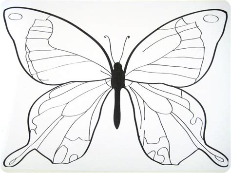Best Resume Font Type by Best Photos Of Butterfly Outlines For Tracing Butterfly