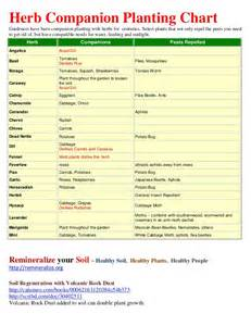 Herb Growing Chart by Herb Companion Planting Chart Herbal Gardens
