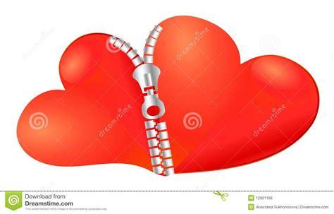 imagenes de dos corazones unidos dos corazones unidos juntos fotos de archivo libres de