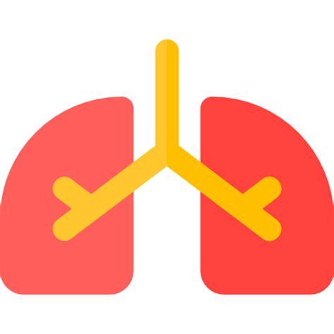 convertir imagenes png a icons pulmones iconos gratis de m 233 dico