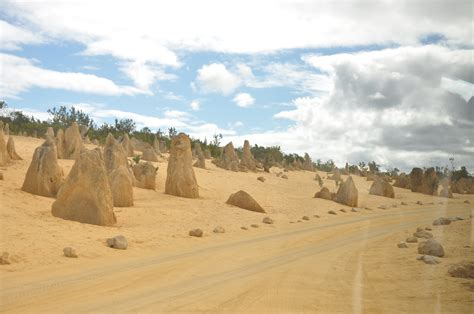 Western Australia Search The Pinnacles Western Australia Desert Wave Search