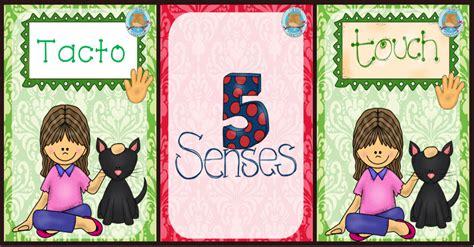 imagenes educativas los sentidos carteles did 193 cticos los 5 sentidos imagenes educativas
