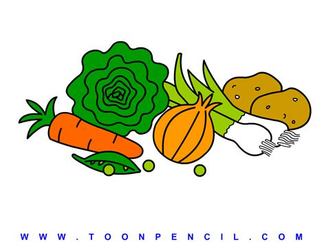 Drawing Vegetables by Fruits And Vegetables Drawing For