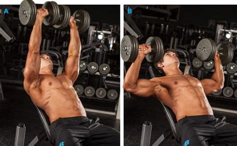 bodybuilding bench press 5 big bench strategies excerpted from bench press the