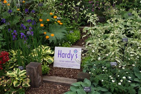hardys cottage garden plants country garden design top 10 cottage garden