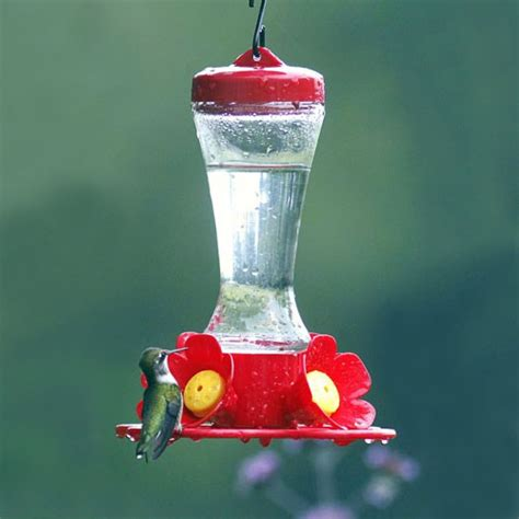 duncraft com impatiens glass hummingbird feeder
