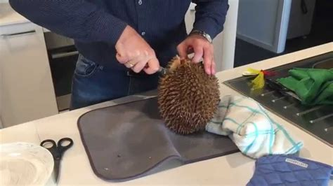 How To Cut Open A How To Cut Open Durian Fruit Easily