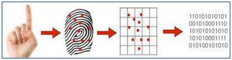 pattern matching tutorialspoint biometrics quick guide