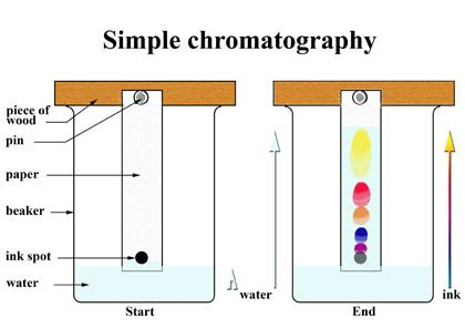 How To Make Chromatography Paper - chromatography