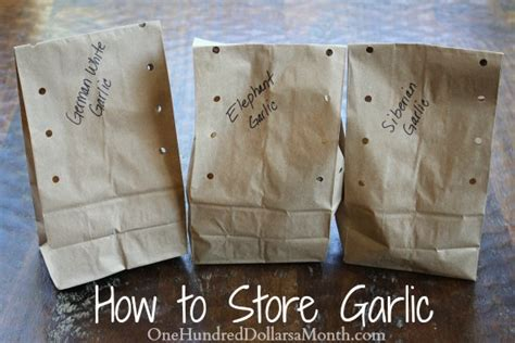 how to store garlic one hundred dollars a month