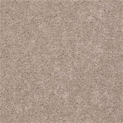 shop shaw stock carpet flaxseed textured indoor carpet at lowes