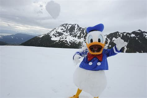 themes line donald duck disney days of past a snowball fight with donald duck