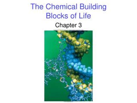 section 4 the building blocks of life ppt organic molecules the building blocks of life