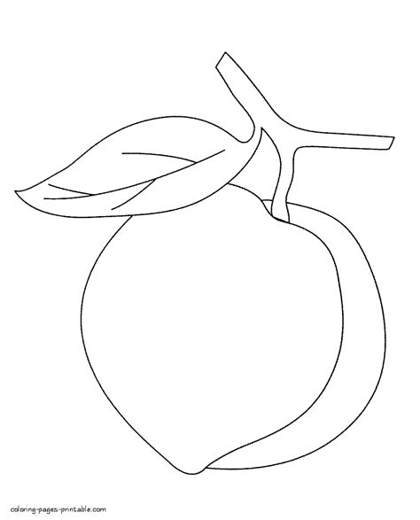 coloring pages preschool peach fruits
