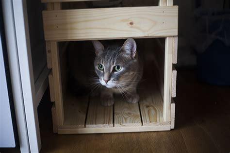 ikea cat bed ikea knagglig cat bed condo hack no extra tools parts
