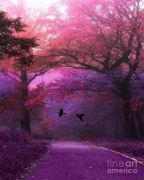 Autumn Pink surreal purple pink autumn fall nature woodlands