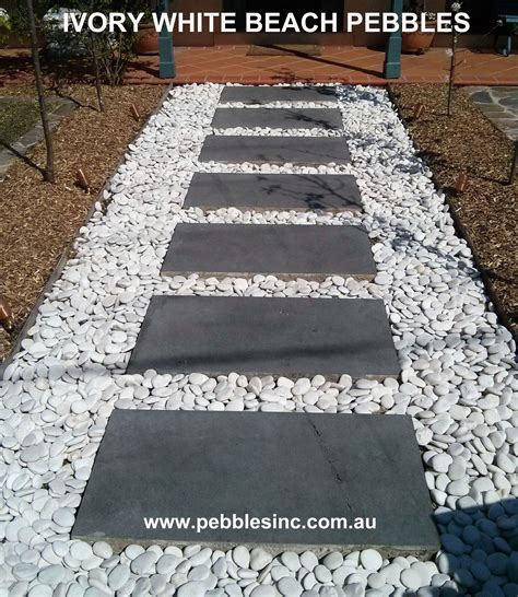 Garden Decorative Pebble by Ivory Pebbles Top Quality