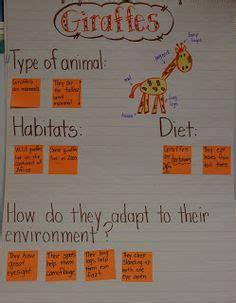 bca zoo day healthy habits grade 1 worksheet earth day pinterest