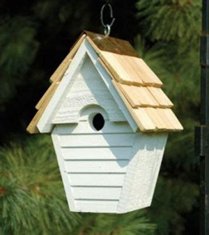 birdhouse cleaning tips how to clean a birdhouse