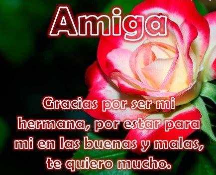 imagenes para una amiga con rosas preciosas im 225 genes de rosas con dedicatorias para mujeres