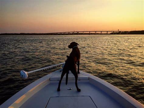 the salty dog s life boating safety with dogs carolina - Salty Dog Boat Magazine