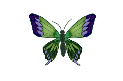 Flying Butterfly Animation Gif Moving Butterfly For Powerpoint