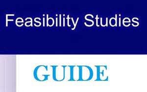 how to prepare a good feasibility report with examples in
