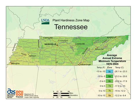 winter garden health department usda unveils new plant hardiness zone map tennessee home