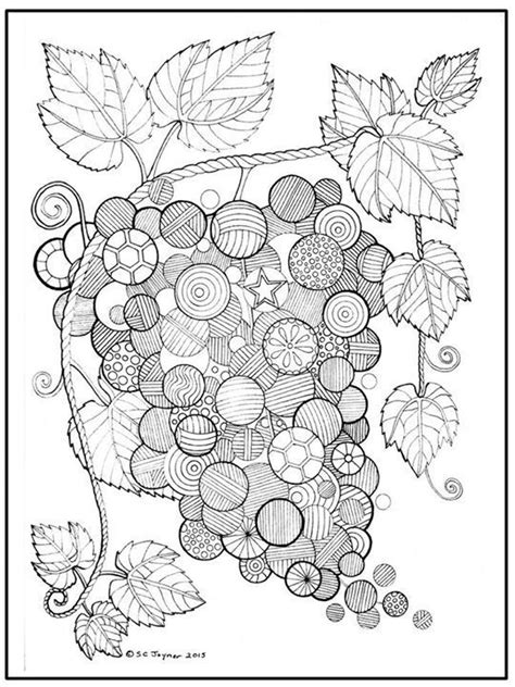 apple coloring pages for adults 145 best coloring fruit vegetable images on pinterest
