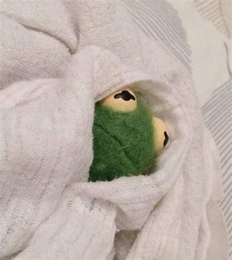 Depressed Frog Meme - 90 best sad kermit images on pinterest frogs dankest