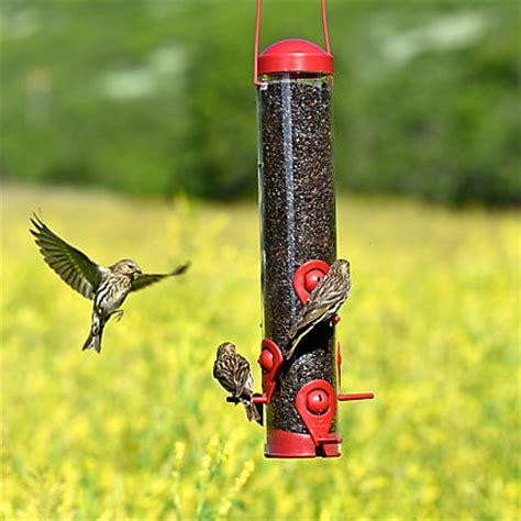 perky pet 174 bird feeder model 3264 birdfeeders com
