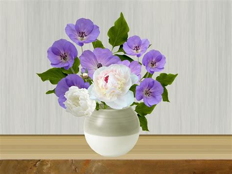 images of 6 flowers in pots topf blumen in t 246 pfen 183 kostenloses bild auf pixabay