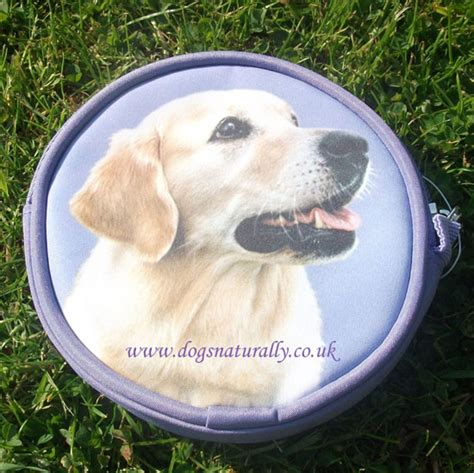 golden retriever purse golden retriever purse dogs naturally