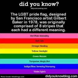 lgbt meaning of the color of the rainbow flag meaning the bord where only unicorns are
