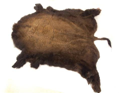 Bison Skin Rug by Large Wintercoat Premium Bison Rug Robe