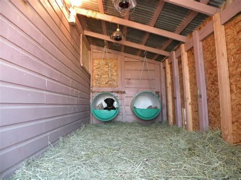 how to heat an outdoor dog house bed hay heat ls and heated water omg dog houses pinterest water dog and