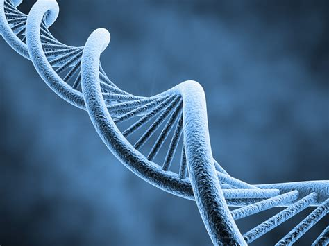 3d Genethics 1 dna 3 d structure molecule pattern abstraction genetic