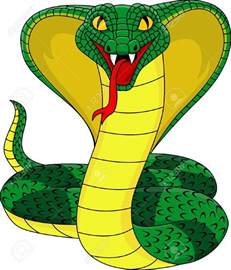 Cobra Snake Clipart cobra cliparts