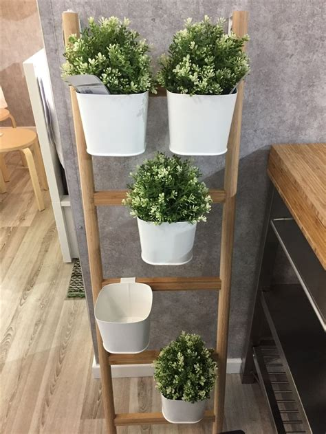 satsumas plant stand ikea 21 best indoor plants decor images on pinterest indoor