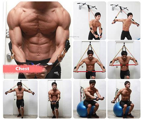 best workouts to increase bench best workouts to increase bench the anatomy of leg raise