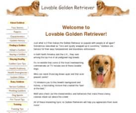 lovable golden retriever com lovable golden retriever