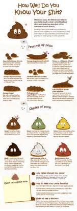 what s your poo telling you by originals