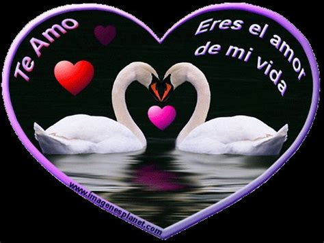 imagenes de amor em movimiento best 25 imagenes de amor movimiento ideas on pinterest
