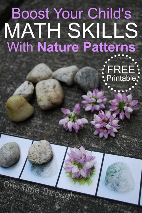 patterns in nature elementary math easily boost your child s math skills with nature patterns